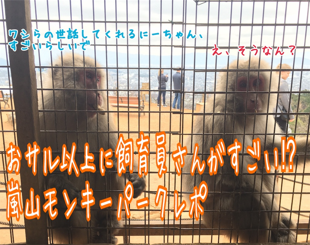 f:id:miyakokara:20190403120337j:image