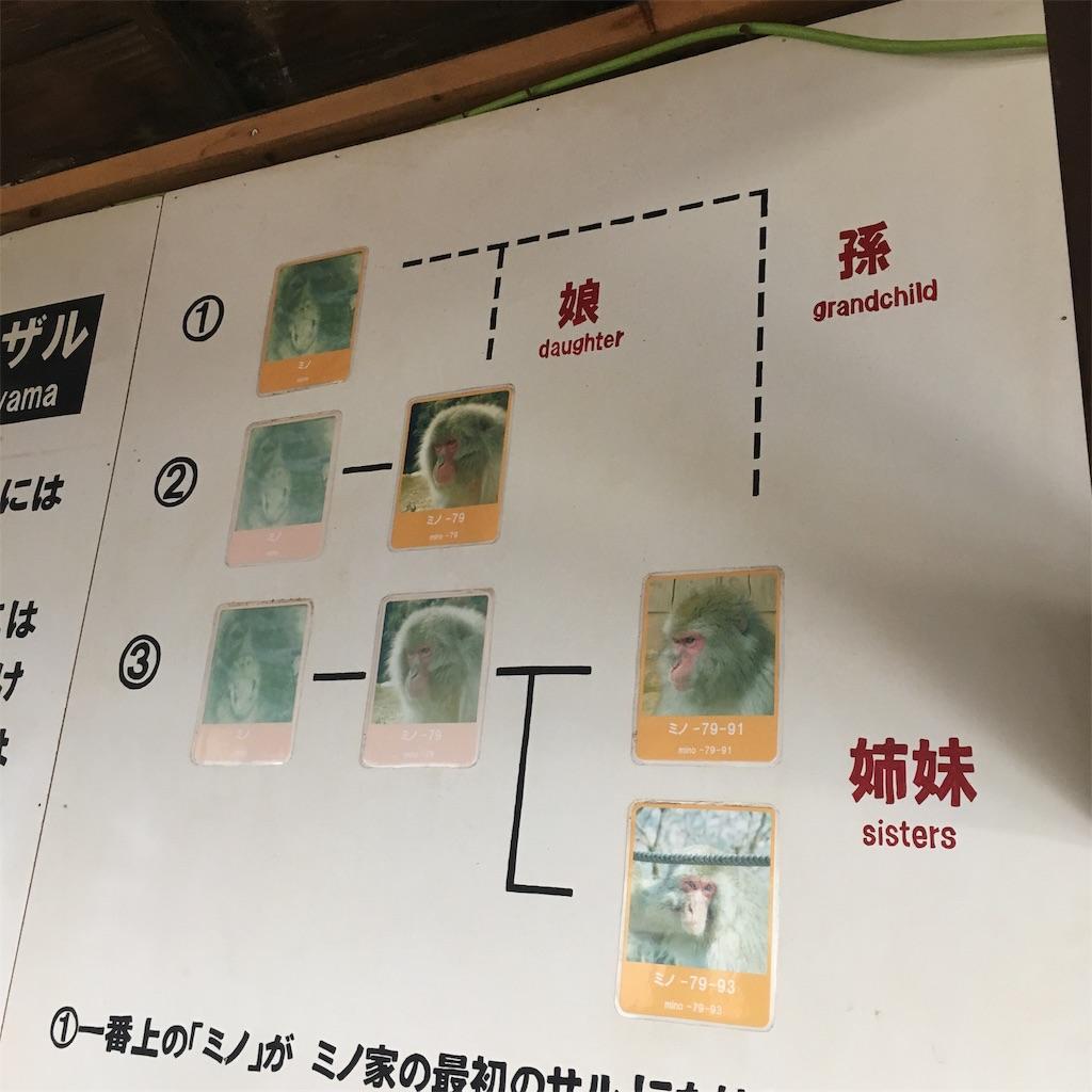 f:id:miyakokara:20190403121343j:image