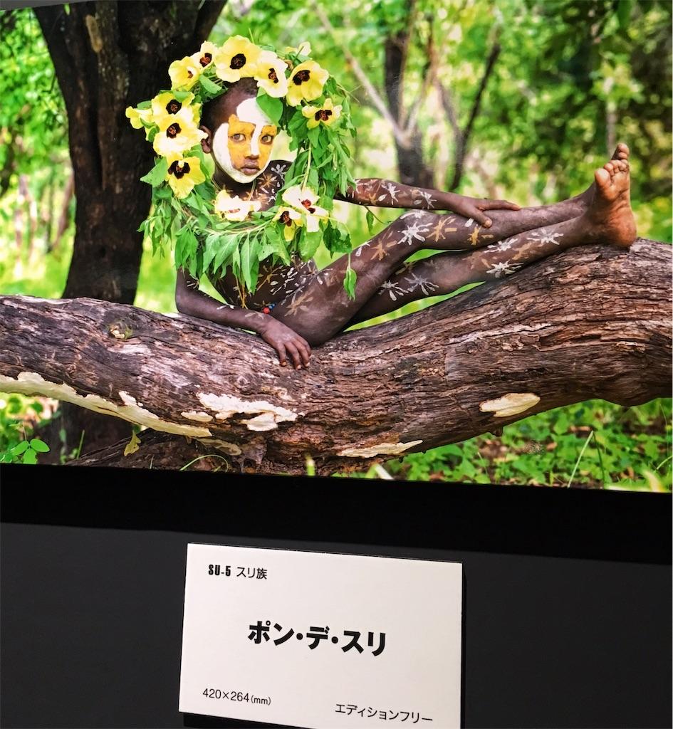 f:id:miyakokara:20190404162734j:image