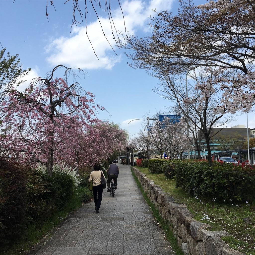f:id:miyakokara:20190410151224j:image