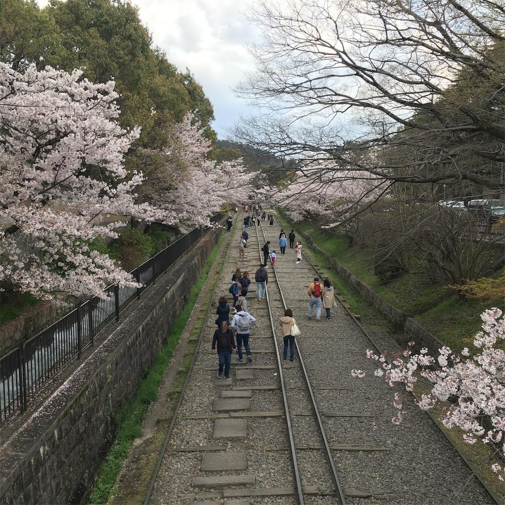 f:id:miyakokara:20190410151538j:image