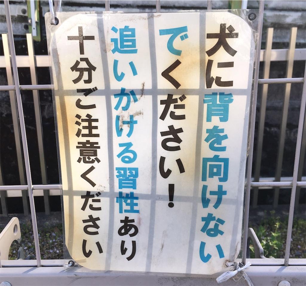 f:id:miyakokara:20190419124149j:image