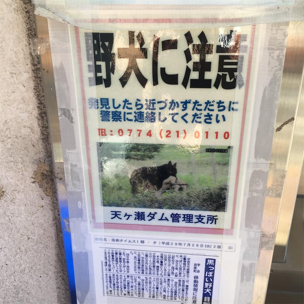 f:id:miyakokara:20190419124204j:image