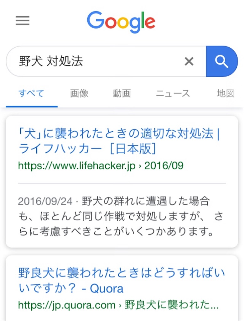 f:id:miyakokara:20190419124714j:image