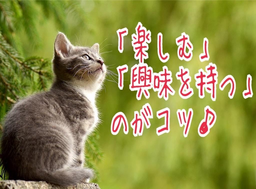 f:id:miyakokara:20190423194822j:image