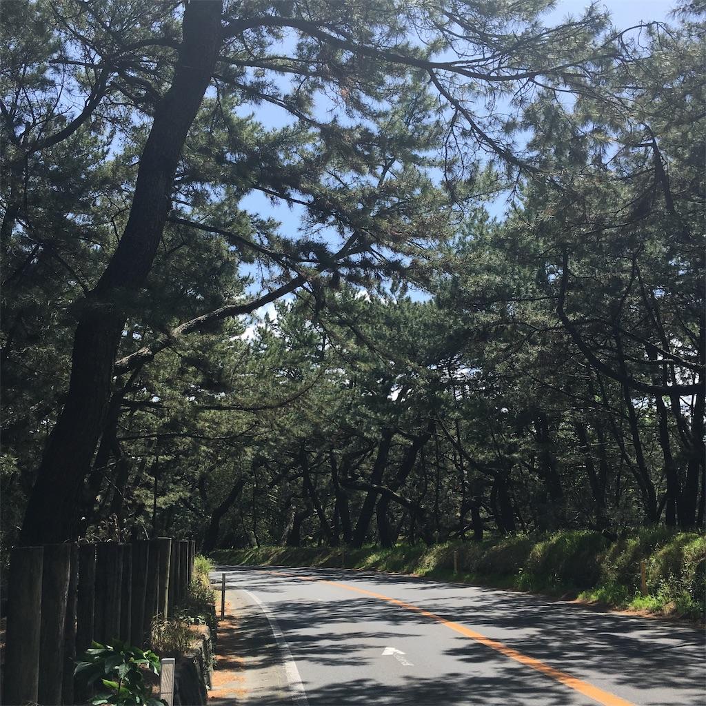 f:id:miyakokara:20190429055305j:image