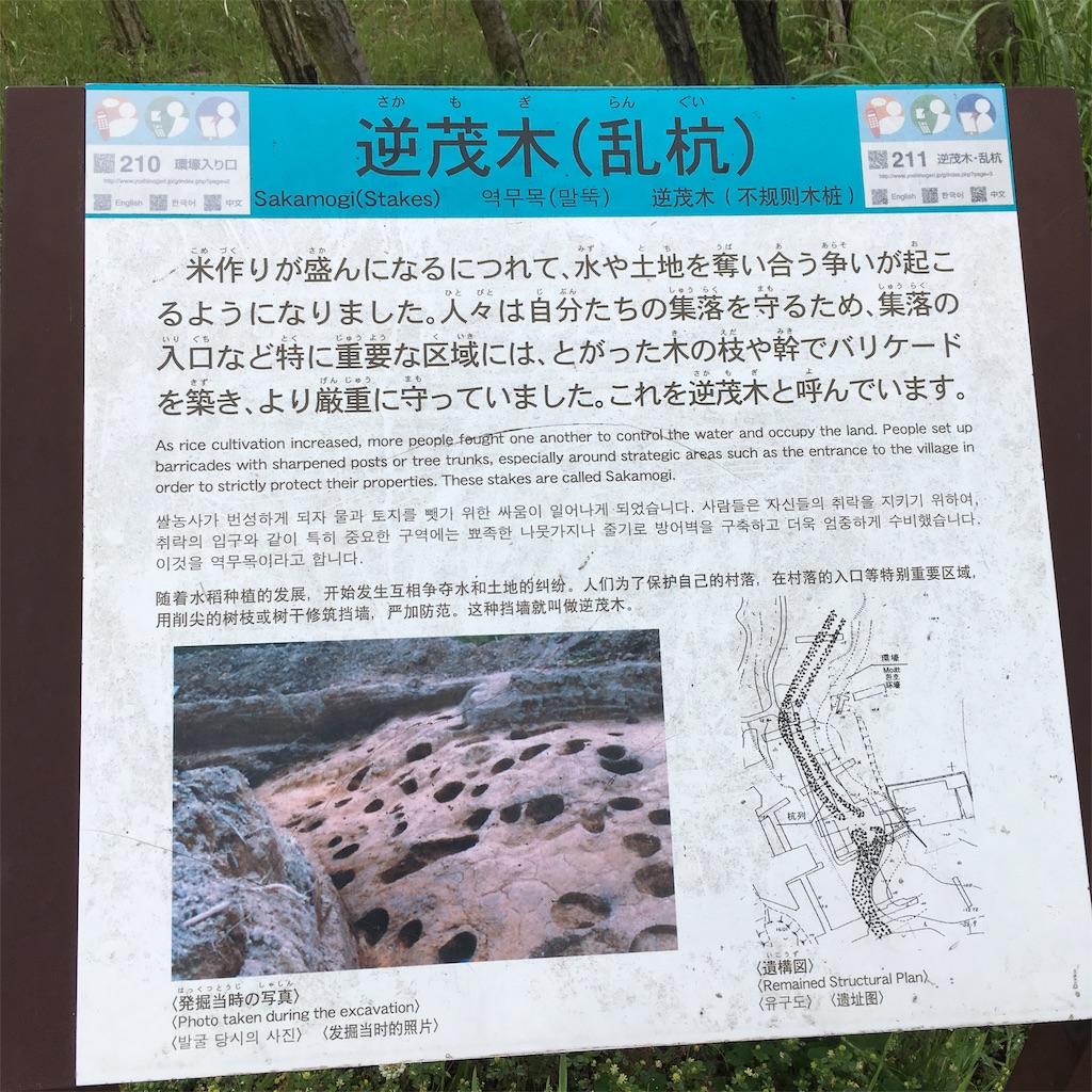 f:id:miyakokara:20190502084035j:image