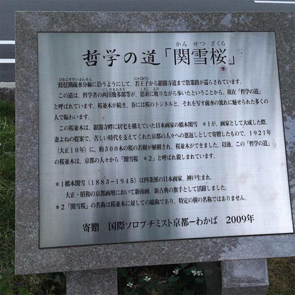 f:id:miyakokara:20190607230249j:image
