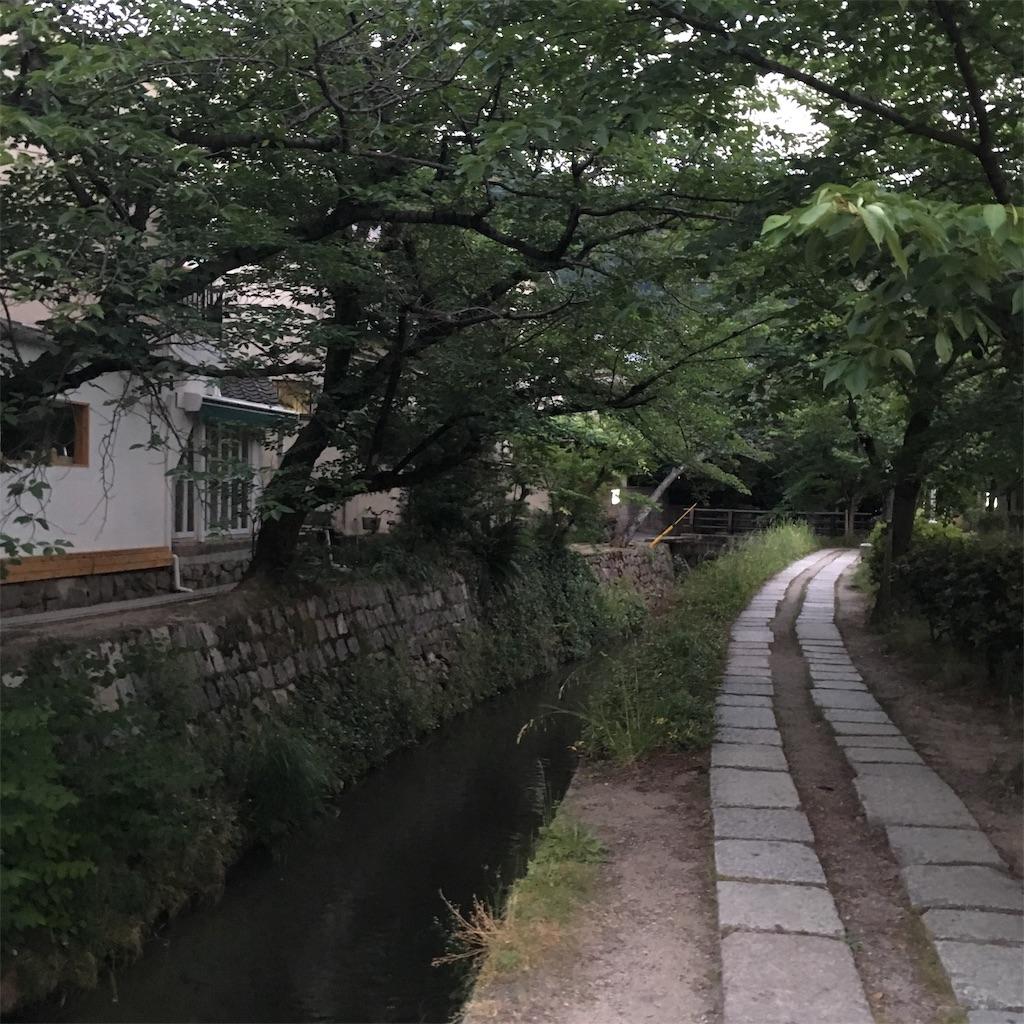 f:id:miyakokara:20190607230303j:image