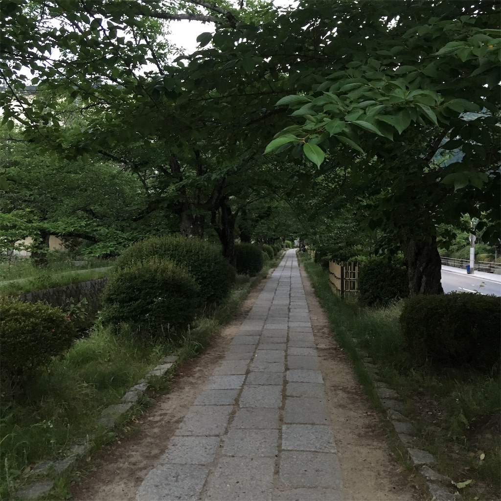 f:id:miyakokara:20190607230309j:image