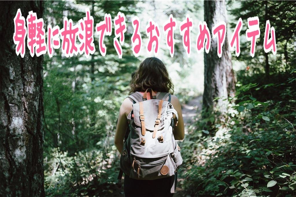 f:id:miyakokara:20190611165919j:image