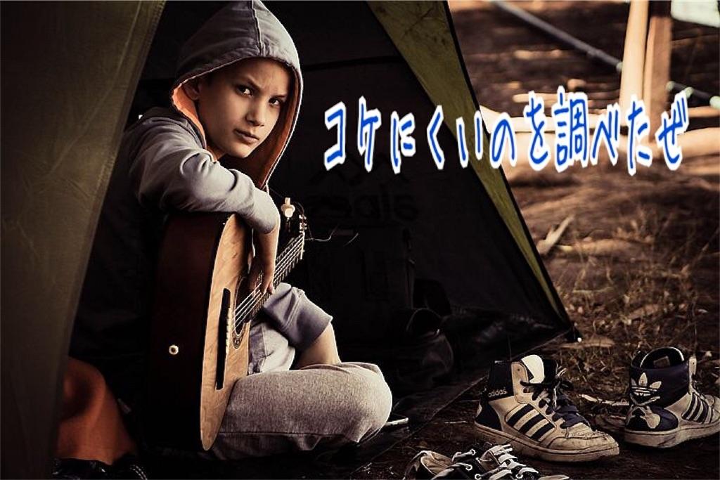 f:id:miyakokara:20190612121713j:image
