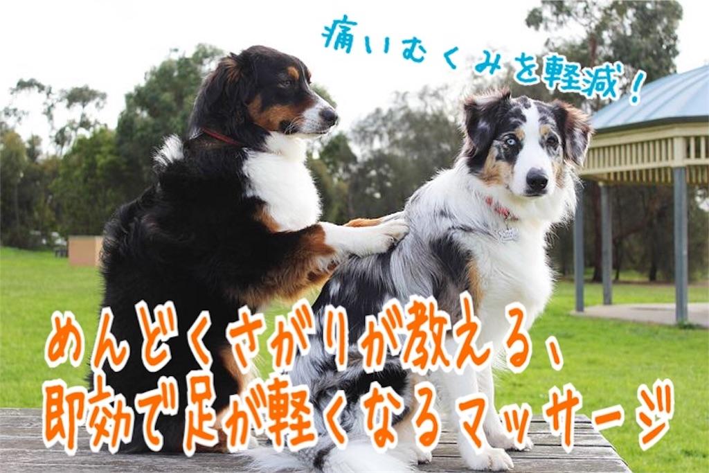 f:id:miyakokara:20190629173749j:image
