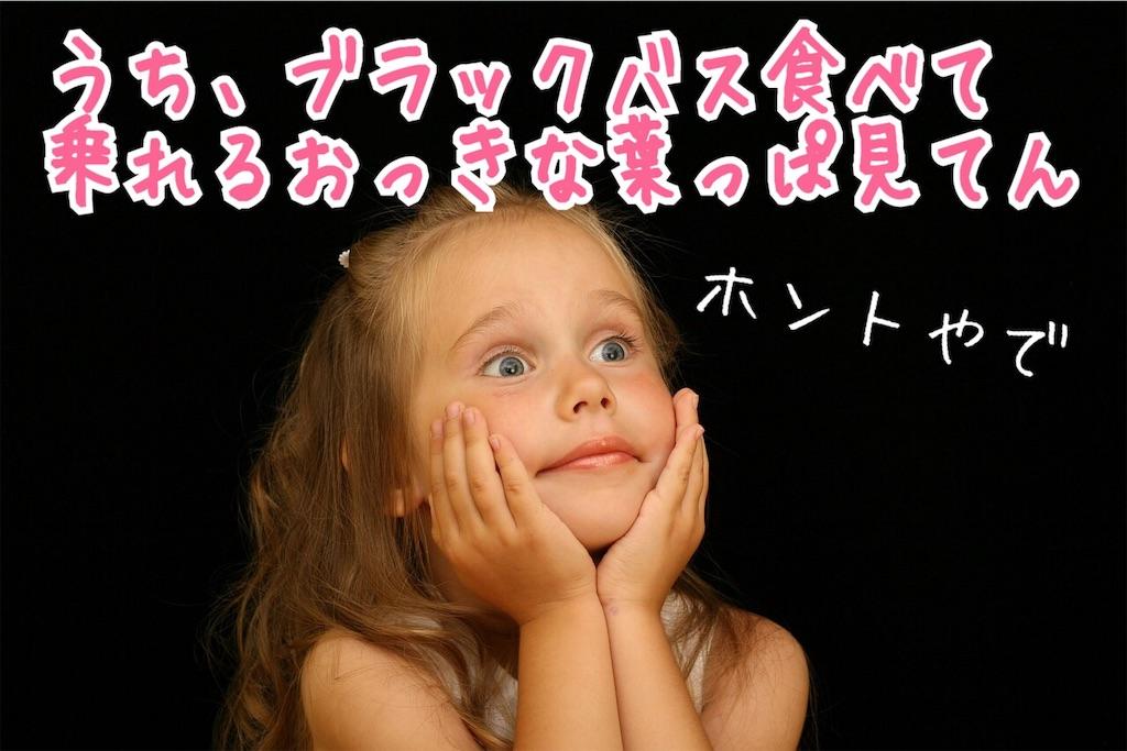 f:id:miyakokara:20190826234503j:image