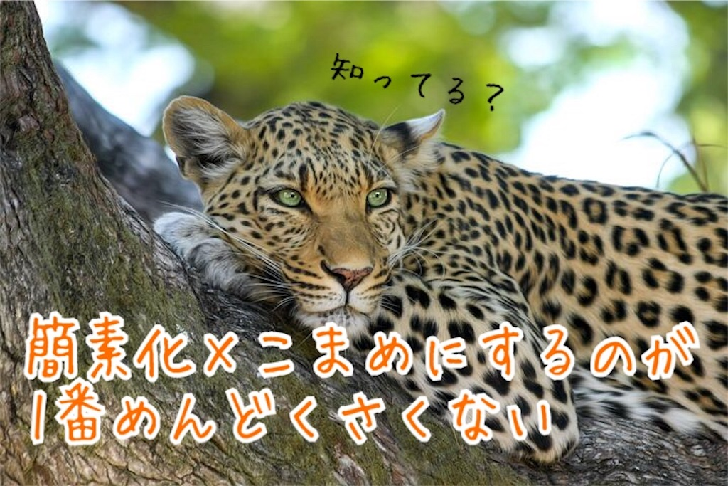 f:id:miyakokara:20190901224359j:image