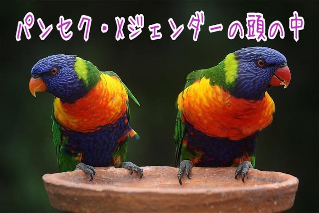 f:id:miyakokara:20190911001703j:image