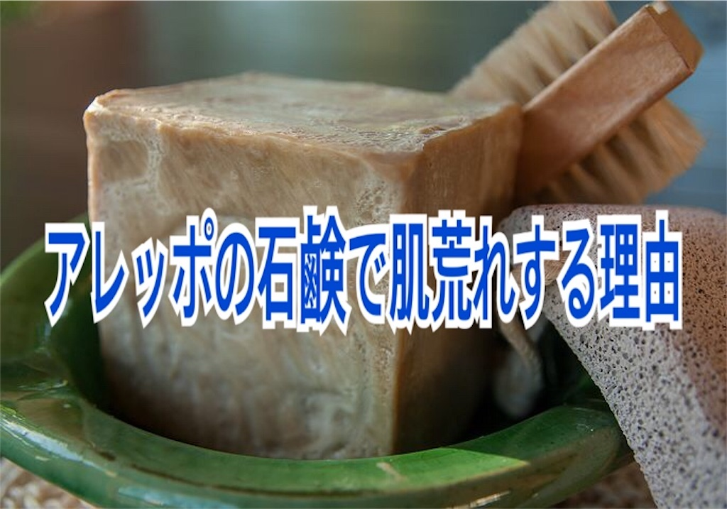 f:id:miyakokara:20190928173046j:image
