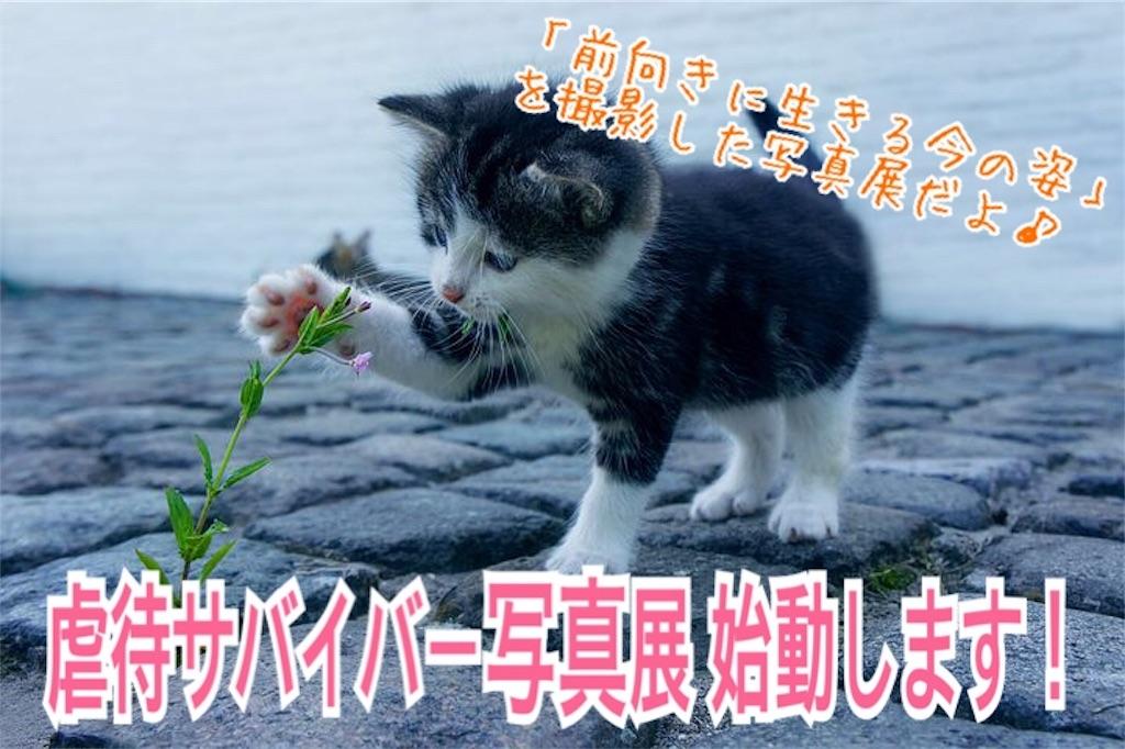 f:id:miyakokara:20191004073727j:image