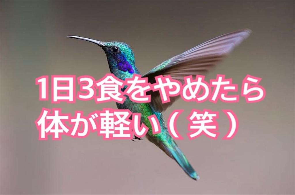 f:id:miyakokara:20191017234704j:image