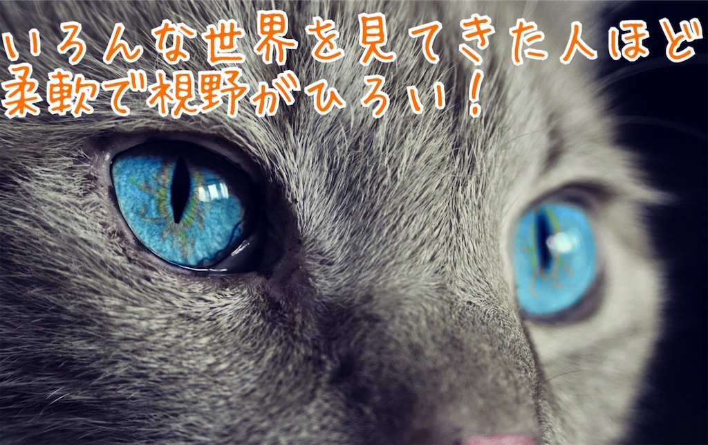 f:id:miyakokara:20191201170110j:image
