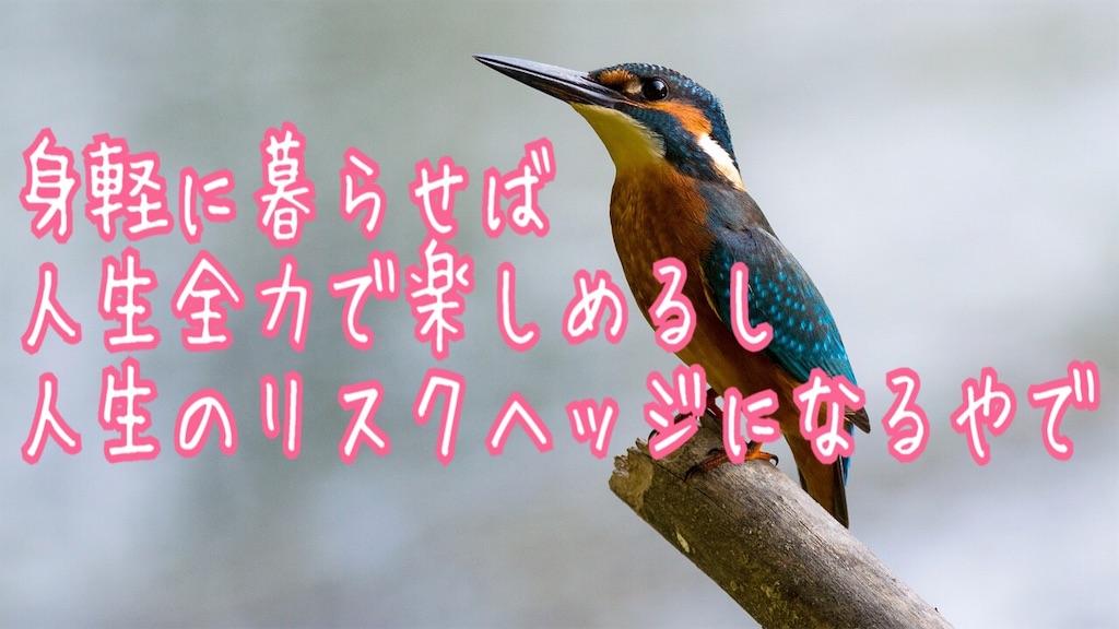 f:id:miyakokara:20191218153905j:image