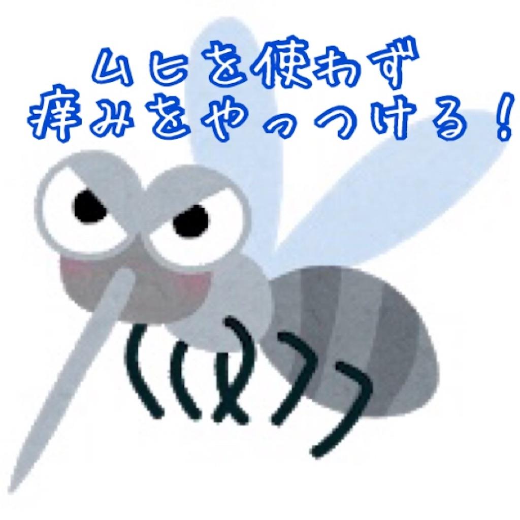 f:id:miyakokara:20200704164204j:image