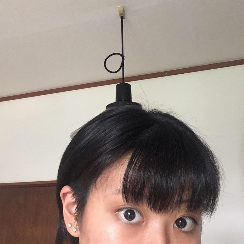 f:id:miyakokara:20200809154048j:image