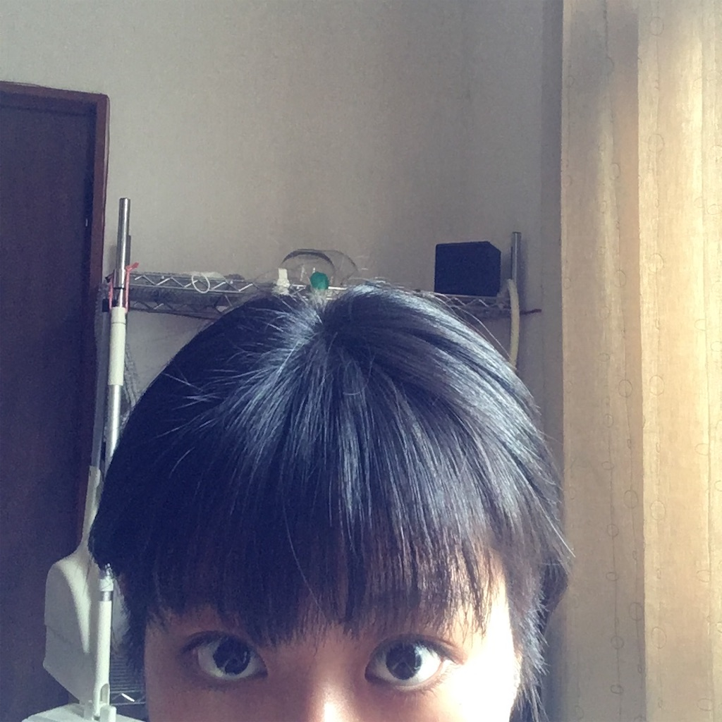 f:id:miyakokara:20200809154053j:image