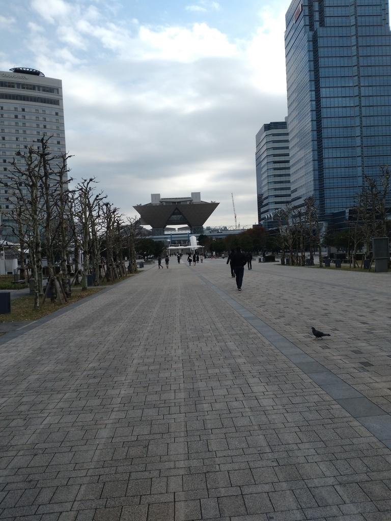 f:id:miyakonbuta:20181211212447j:plain
