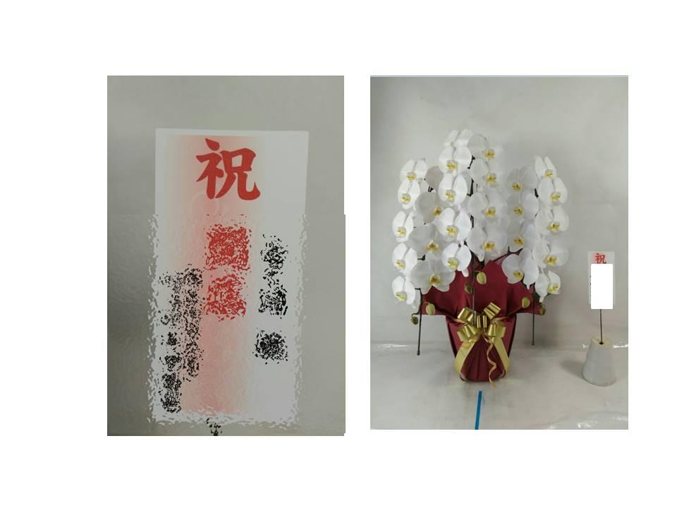 f:id:miyakonbuta:20190531210427j:plain