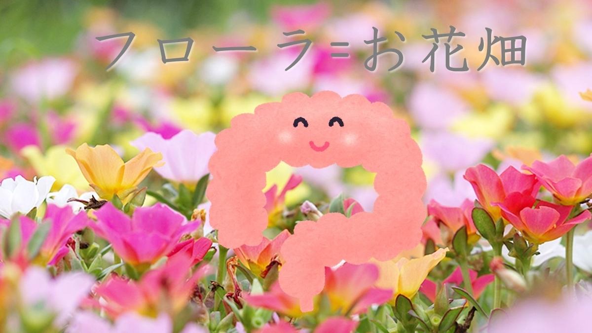 f:id:miyakonbuta:20190715211050j:plain