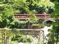 [京都]保津峡