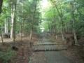 [京都]常照皇寺