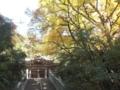 [お遍路]44大宝寺