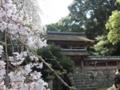 [京都][世界遺産]醍醐寺 清瀧宮本殿