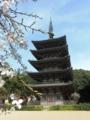 [京都][世界遺産]醍醐寺 五重塔