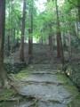 [京都][世界遺産]高山寺
