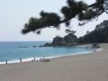 [お遍路]桂浜