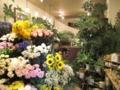 [花]wyeth