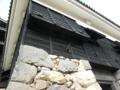 [城]松江城 石落とし