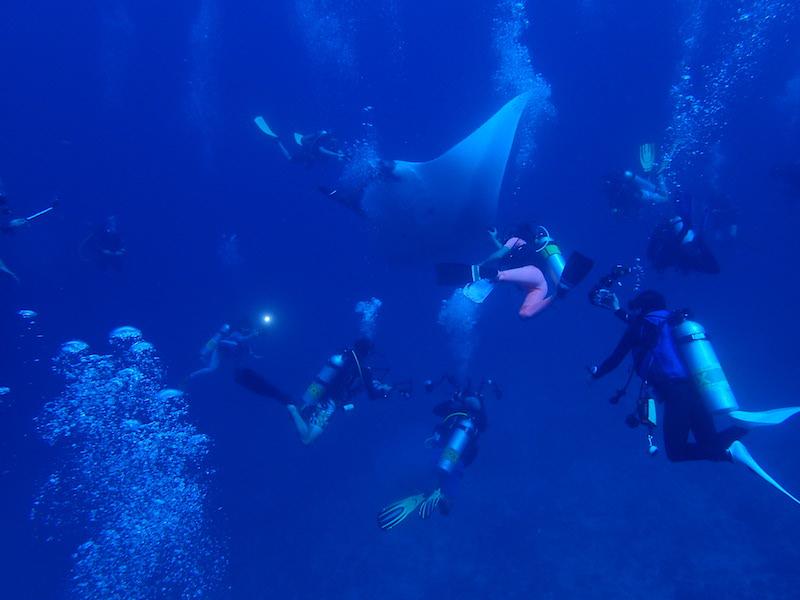 タイ ダイビングクルーズ