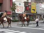 宇都宮の道を歩いていた馬
