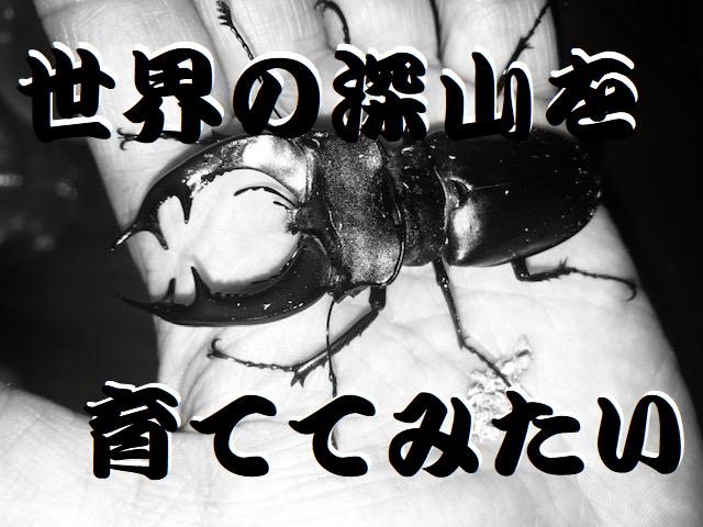 f:id:miyamaoyajikun:20210425195900p:plain