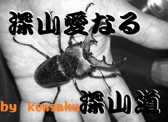 f:id:miyamaoyajikun:20210703041419p:plain