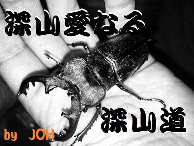f:id:miyamaoyajikun:20210807212701p:plain