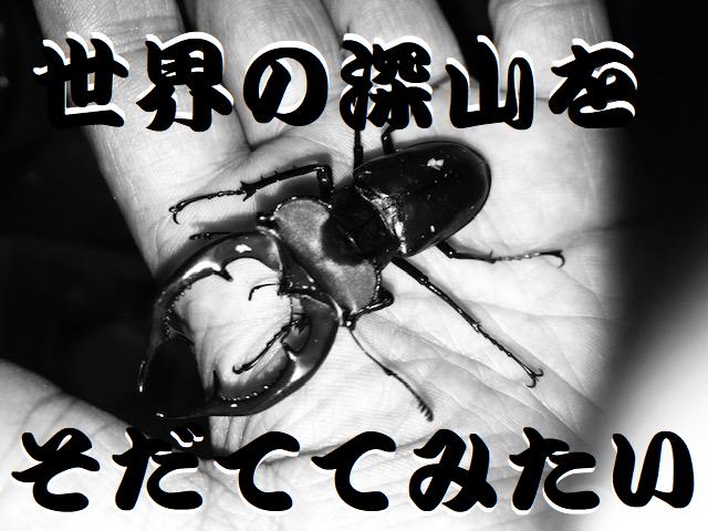 f:id:miyamaoyajikun:20210807213518p:plain