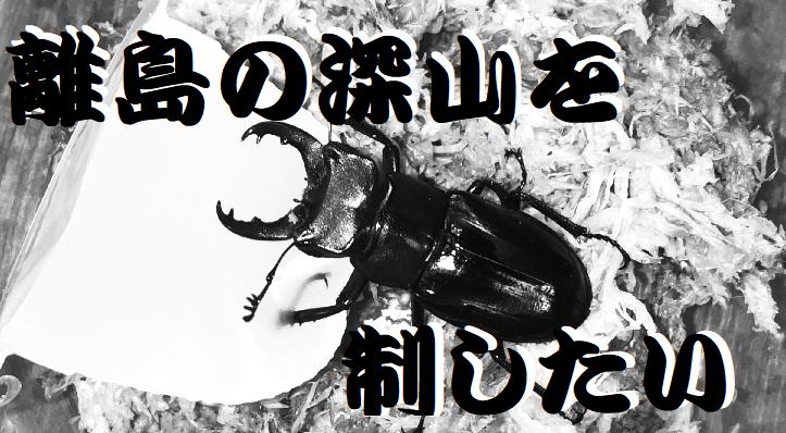 f:id:miyamaoyajikun:20210814150743p:plain