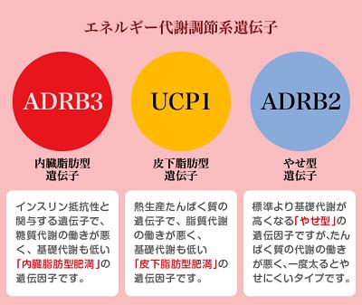 f:id:miyamarin:20170915170746p:plain