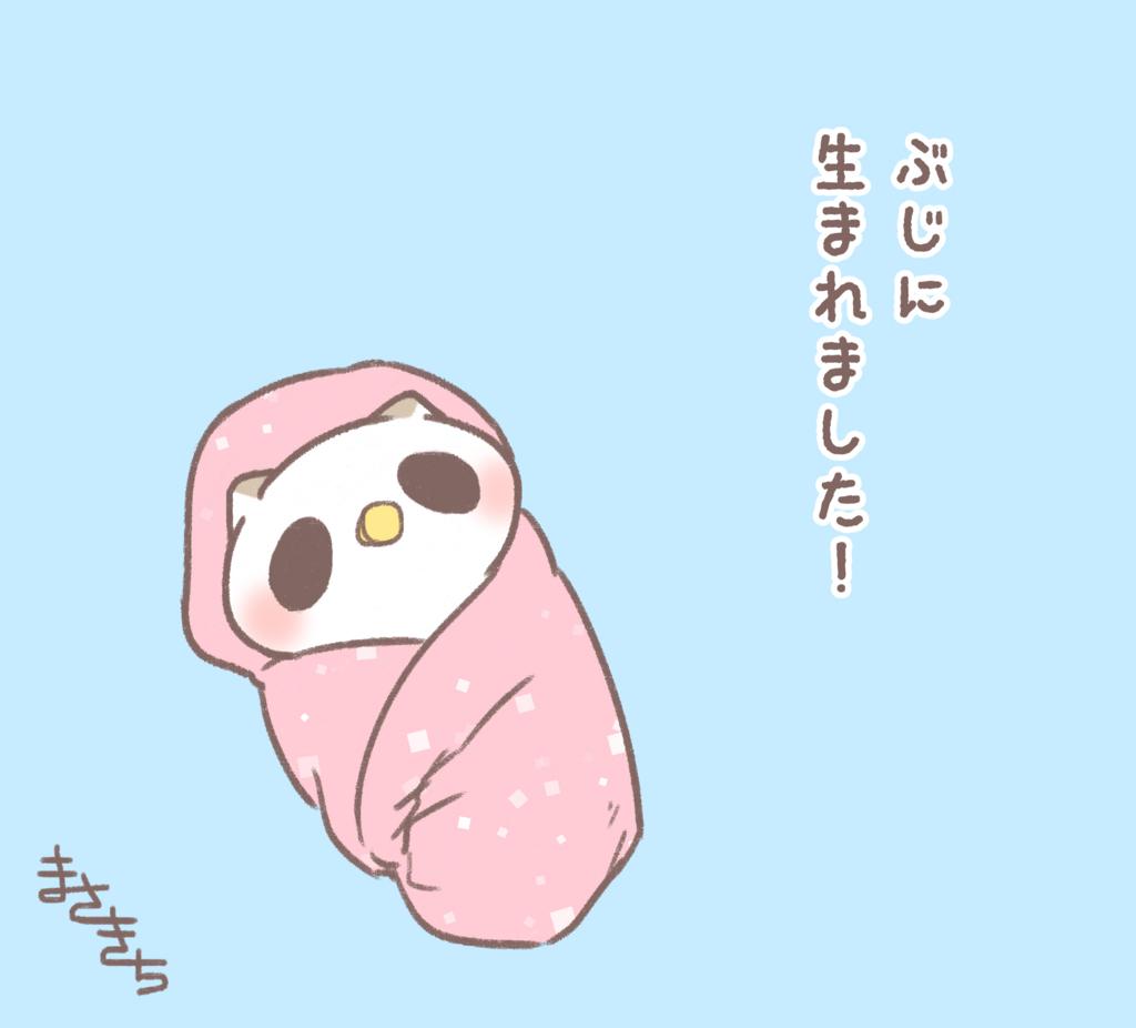 f:id:miyamasaki:20170624011306j:plain