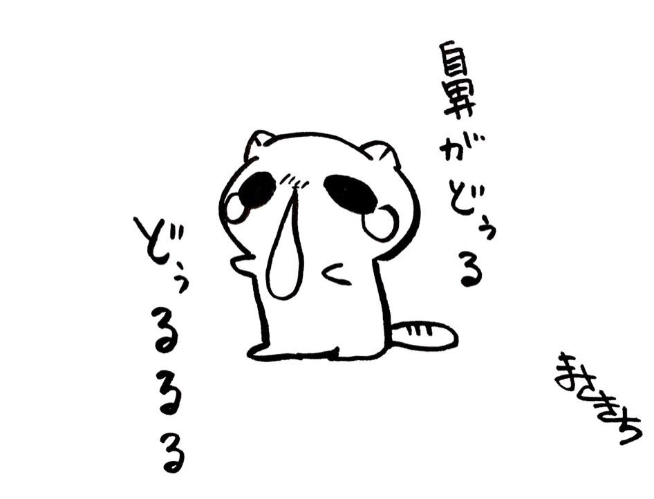 f:id:miyamasaki:20170801030108j:image